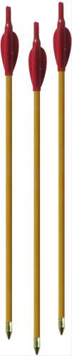 Arcy Holzpfeil JUSP mit Spitze 3er-Set