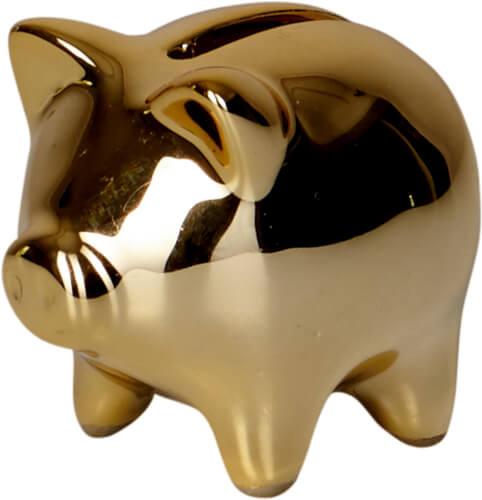 Die Spiegelburg - Goldenes Sparschwein Viel Glück