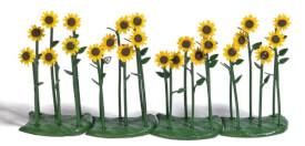 H0 24 Sonnenblumen