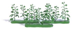 H0 9 Gurkenpflanzen