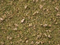 Noch 07075 Grasmischung Almwiese