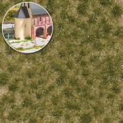 Grasbüschel 2-fbg,lang,Frühli