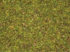 Streugras Blumenwiese