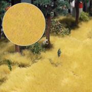 Trockenes Gras