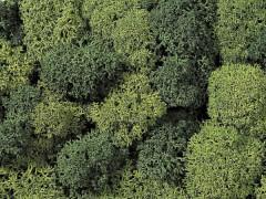 Dekormoos hell-/dunkelgrün
