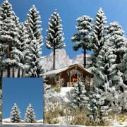 2 Schnee-Fichten, 55 mm