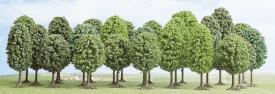 H0 25 Laubbäume