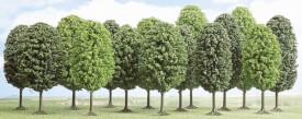 N015 Laubbäume