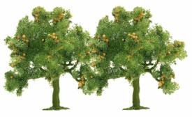 N 2 Apfelbäume(45)