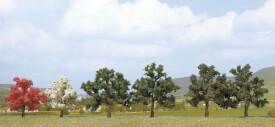 Z 2 Obstbäume (35)