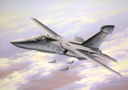 REVELL  04974 1:72 EF-111A Raven ab 12 Jahre