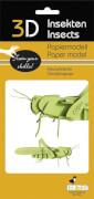 fridolin - 3D Papiermodell - Heuschrecke, Spezialkarton, gelasert