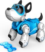 Pupbo - blue version