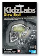 Kidz LaBright Starts Having a Ball  Glow Skull