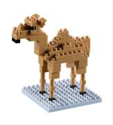 200.109 BRIXIES Kamel