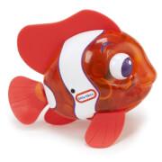Sparkle Bay Funkelfisch orange
