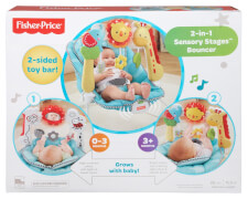 Mattel Fisher Price 2-in-1 Sensory Stages Wippe