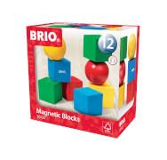 BRIO 63012300 Magnetische Holzbausteine