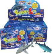 Sharks & Co. Maxxi Edition