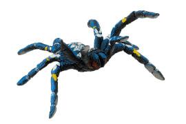 Bullyland, Blaue Ornamentvogelspinne