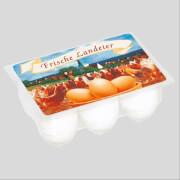 6 Eier in Kunststoff-Box