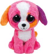 Ty Precious Hund bunt, ca. 15 cm