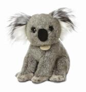 MiYoni Koala 9In