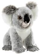 ENDANGERED Koala Bär 28 cm