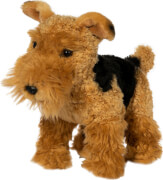 Airedale-Terrier, stehend