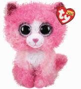 REAGAN Katze - Boo Med