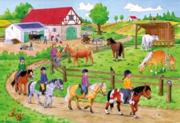 Noris  XXL Puzzle Ferien auf dem Ponyhof