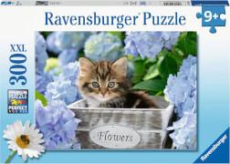 Ravensburger 12894 Puzzle Kleine Katze 300 Teile