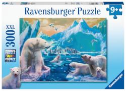 Ravensburger 12947 Puzzle Im Reich der Eisbären