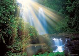 Waterfall Standard 1000 Teile