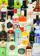Puzzle Taste of Gin