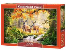 Castorland Royal Family, Puzzle 1000 Teile