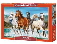 Castorland Call of Nature, Puzzle 2000 Teile