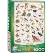 EuroGraphics Puzzle Vögel 1000 Teile