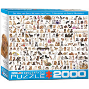 EuroGraphics Puzzle Hundewelt 2000 Teile