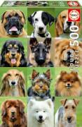 Educa - Dogs Collage 500 Teile