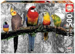 Educa - Birds in the Jungle black & white 500 T.
