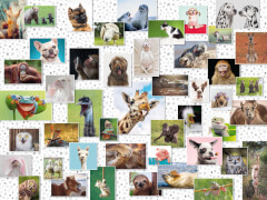 Ravensburger 16711 Puzzle Funny Animals Collage 1500 Teile