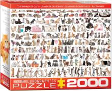 Eurographics Puzzle Welt der Katzen
