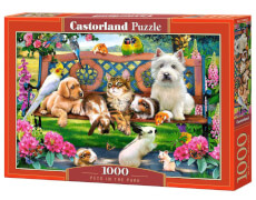 Glow2B Castorland Pets in the Park, Puzzle 1000 Teile