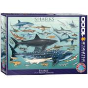 EuroGraphics Puzzle Haie 1000 Teile