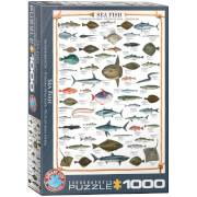 EuroGraphics Puzzle Seefische 1000 Teile
