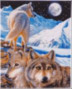 Crystal Art Leinwand Der Wächter 40x50 cm