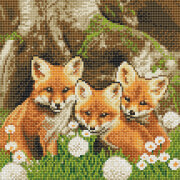 Crystal Art Fuchswelpen 30x30 cm