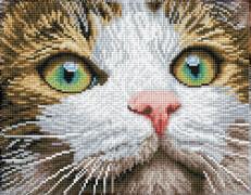 DIAMOND DOTZ Katzenschönheit 27,7x35,5 cm
