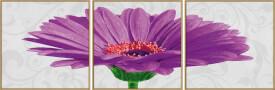 Malen nach Zahlen - Gerbera jamesonii violett (Tript.)